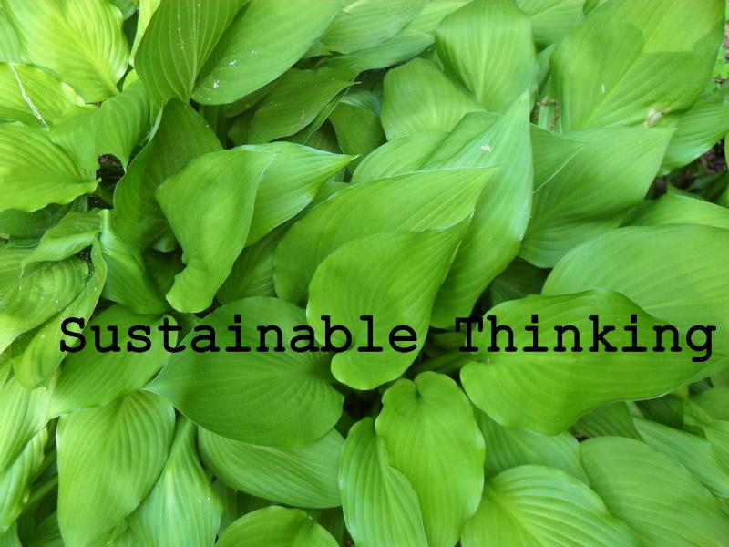 Sustainable Thinking